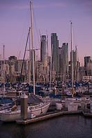 South Beach Harbor & SF Skyline
