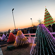 A display of smaller trees, each symbolizing one state, clustered around the main White House Christmas Tree on the Ellipse next to the White House in Washington DC.