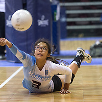 Ganado Hornet Mariah Cook (3) dives for the ball in the front row during the game against Scottsdale Christian Academy in Prescott Thursday.