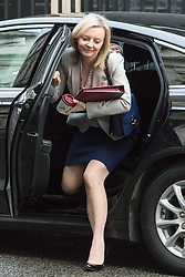 Downing Street, London, February 2nd 2016. Secretary of State for Environment, Food and Rural Affairs Liz Truss arrives at No 10 prior to attending the weekly Cabinet meeting. ///FOR LICENCING CONTACT: paul@pauldaveycreative.co.uk TEL:+44 (0) 7966 016 296 or +44 (0) 20 8969 6875. ©2015 Paul R Davey. All rights reserved.
