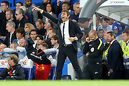 Antonio Conte, the Chelsea manager shouting at his players from the touchline. Premier league match, Chelsea v Liverpool at Stamford Bridge in London on Friday 16th September 2016.<br /> pic by John Patrick Fletcher, Andrew Orchard sports photography.