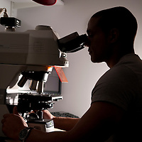 Cardiology research and analysis