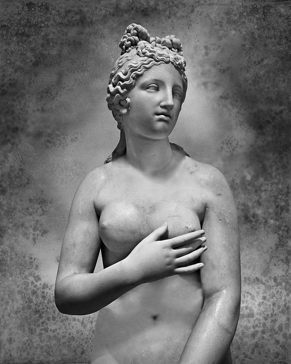 2nd century AD Roman marble sculpture of Aphrodite (Venus), 'Dresden Capitoline Type, copied from a Hellanistic Greek original,  inv 6238, Naples Museum of Archaeology, Italy.  Wall art print by Photographer Paul E Williams