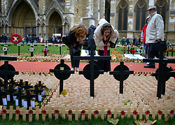 © Licensed to London News Pictures. 08/11/2012. Westminster, UK People look at the Royal British Legion Field of Remembrance at Westminster Abbey today 8th November 2012.  Thousands of crosses with poppies attached are planted every year to remember Britain's war dead. Photo credit : Stephen Simpson/LNP