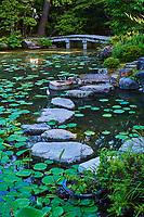 Japon, île de Honshu, région de Kansaï, Kyoto, jardin hakusasonso // Japan, Honshu island, Kansai region, Kyoto, hakusasonso garden