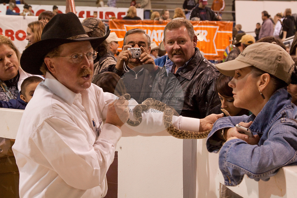 SWEETWATER, TX - MARCH 14: A Jaycees volunteer snake handler shows off a western diamondback rattlesnake brought in by hunters during the 51st Annual Sweetwater Texas Rattlesnake Round-Up, March 14, 2009 in Sweetwater, Texas. Approximately 24,000 pounds of rattlesnakes will be collected, milked for venom and the meat served to support charity. (Photo by Richard Ellis)