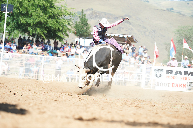 Bareback rider Diego Benedetti of Ontario, OR rides Gizmo at the Woodlake Lions Rodeo.<br /> <br /> <br /> UNEDITED LOW-RES PREVIEW<br /> <br /> <br /> File shown may be an unedited low resolution version used as a proof only. All prints are 100% guaranteed for quality. Sizes 8x10+ come with a version for personal social media. I am currently not selling downloads for commercial/brand use.