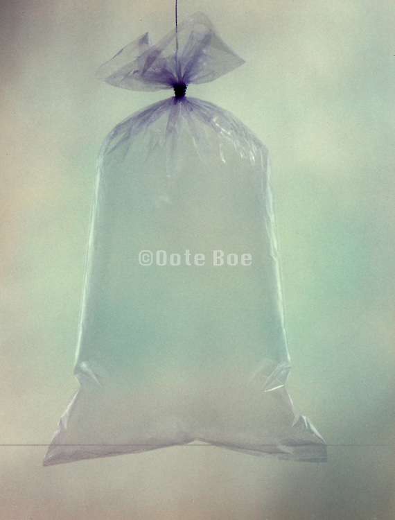 A plastic bag filled with air and tied at the top.