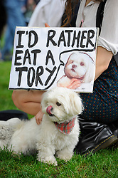 """© Licensed to London News Pictures. 29/05/2017. London UK. A demonstrator and her dog join an """"Anti-Hunting March"""" in central London, marching from Cavendish Square to outside Downing Street.  Protesters are demanding that the ban on fox hunting remains, contrary to reported comments by Theresa May, Prime Minister, that the 2004 Hunting Act could be repealed after the General Election.<br />  Photo credit : Stephen Chung/LNP"""