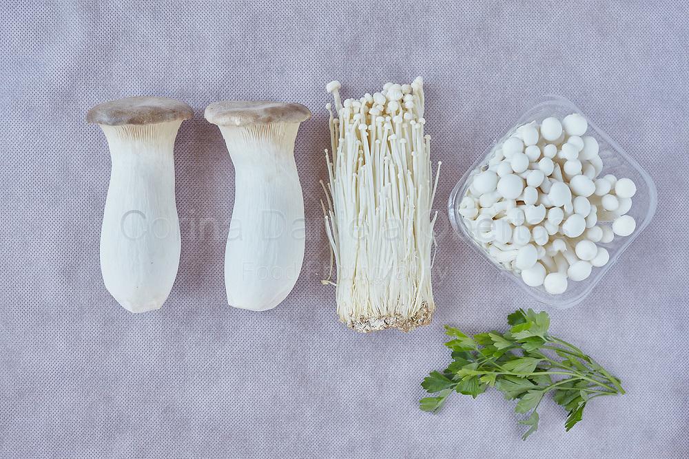 King trumpet mushroom, called also French horn mushroom (Pleurotus eryngii), enokitake or enoki (Flammulina velutipes) and white shimeji mushrooms (Hypsizygus armoreus-Shimeji).