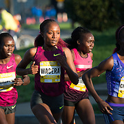 Leaders of the women's race of the 2015 Credit Union Cherry Blossom 10 Mile Run pass the 4-mile mark of the race. The Cherry Blossom 10-Miler (formally the Credit Union Cherry Blossom 10 Mile Run) is held each spring during the National Cherry Blossom Festival and attracts tends of thousands of runners.