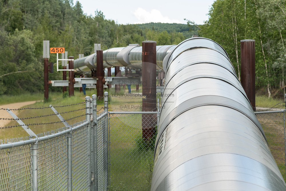 The elevated Trans-Alaskan oil pipeline at the Alyeska Pipeline Visitors Center  in Fairbanks, Alaska. The 4-foot wide pipeline snakes through 800 miles of Alaskan wilderness carrying crude oil from Prudhoe Bay to Valdez, Alaska.