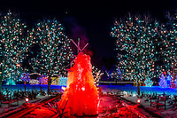 A frozen water fountain, A Hudson Christmas (holiday light show at Hudson Gardens), Littleton, Colorado USA.
