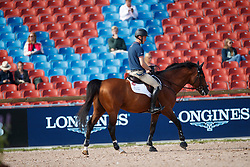 Whitaker William, GBR, Fento Chin S<br /> Official Training Jumping<br /> FEI European Para Dressage Championships - Goteborg 2017 <br /> © Hippo Foto - Dirk Caremans<br /> 22/08/2017,