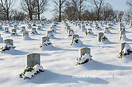 65095-03019 Wreaths on graves in winter Jefferson Barracks National Cemetery St. Louis,  MO