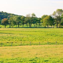 A hay field at the Raymond Farm in Ipswich, Massachusetts.