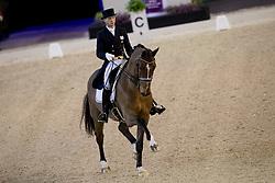 Carrascosa Borja, ESP, Foco Loco W<br /> Indoor Brabant - Den Bosch 2017<br /> © Hippo Foto - Dirk Caremans<br /> 10/03/2017