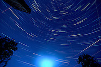 Straight Up Star Trails. Autumn Night Sky in New Jersey. Image taken with a Nikon D3x and 14-24 mm f/2.8 mm lens (ISO 100, 15 mm, f/4, 1 min 59 sec). Composite of 29 images combined using the Startrails program.