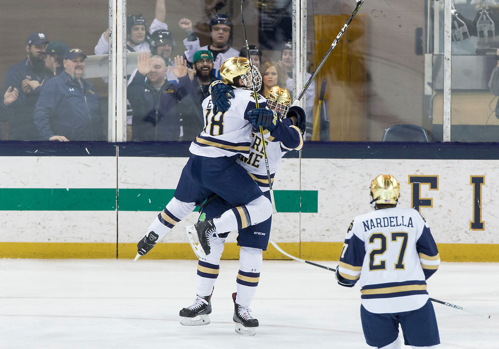 March 17, 2018:  Notre Dame forward Bo Brauer (29) and Notre Dame forward Jake Evans (18) celebrate goal during NCAA Hockey game action between the Notre Dame Fighting Irish and the Ohio State Buckeyes at Compton Family Ice Arena in South Bend, Indiana.  Notre Dame defeated Ohio State 3-2 in overtime.  John Mersits/CSM