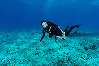 Sylvia Earle and Dive Watch Rolex Seychelles