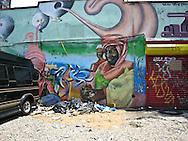 New York. graphes in Brooklyn  New York, Manhattan - United states  Brooklyn / graffitis  Manhattan, New York - Etats unis