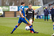 Wimbledon defender Steve Seddon (15), on loan from Birmingham City, in action  during the EFL Sky Bet League 1 match between Shrewsbury Town and AFC Wimbledon at Greenhous Meadow, Shrewsbury, England on 2 March 2019.