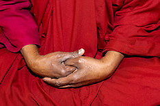 Bhante G Final Images