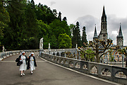 Lourdes is a town in southwestern France, in the foothills of the Pyrenees mountains. It's known for the Sanctuaires Notre-Dame de Lourdes, or the Domain, a major Catholic pilgrimage site. Each year, millions visit the Grotto of Massabielle (Grotto of the Apparitions) where, in 1858, the Virgin Mary is said to have appeared to a local woman. In the grotto, pilgrims can drink or bathe in water flowing from a spring.