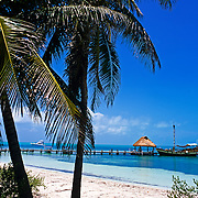 Isla Contoy. Quintana Roo, Mexico.