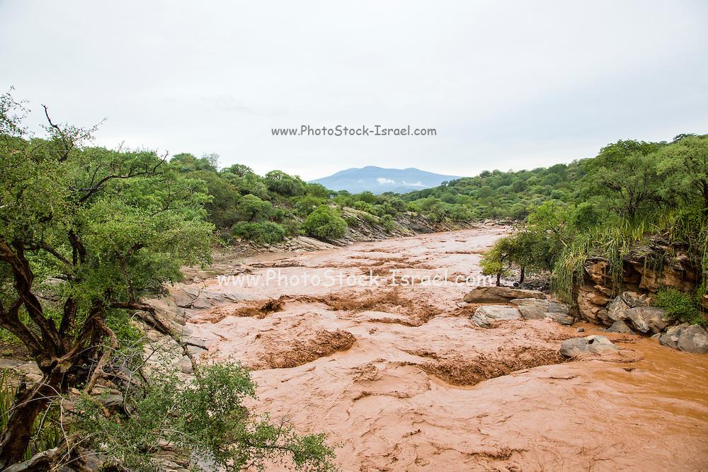 Flash flood, brown muddy water, near Lake Eyasi, Tanzania
