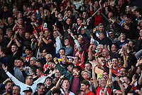 FOOTBALL - 2018 / 2019 Premier League - Watford vs Southampton<br /> <br /> Southampton supporters celebrate as Shane Long scores within 8 seconds, at Vicarage Road.<br /> <br /> COLORSPORT/ASHLEY WESTERN