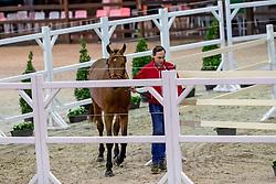 071, Happy Landais<br /> BWP Hengstenkeuring -  Lier 2020<br /> © Hippo Foto - Dirk Caremans<br />  18/01/2020