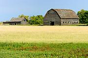 Old barn<br />Shilo<br />Manitoba<br />Canada
