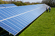 Two British men walk along a large solar power energy panel in a field in Wadebridge, Cornwall, UK.
