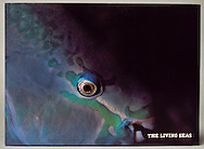 The Living Seas book cover with Queen Parrotfish. <br /> I photographed underwater for two and a half years the natural habitat that would be represented in the EPCOT aquarium.  That work became the official book for the aquarium.