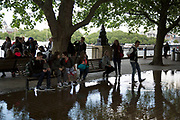 Deep puddle under trees after heavy rain on the riverside walkway. The South Bank is a significant arts and entertainment district, and home to an endless list of activities for Londoners, visitors and tourists alike.