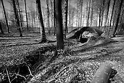Argonne Forest WW1 Meuse-Argonne Battlefield site, France. March 2014<br /> The Argonne Forest offensive, part of the final 100 days of WW1 and a major attack on the wetern side of Verdun, was the largest battle in American history up to this point and involved 1.2 million American soldiers.<br /> <br /> Caption information below from Wikipedia:<br /> The Meuse-Argonne Offensive, also known as the Maas-Argonne Offensive and the Battle of the Argonne Forest, was a part of the final Allied offensive of World War I that stretched along the entire Western Front. It was fought from September 26, 1918, until the Armistice on November 11, a total of 47 days. The battle was the largest in United States military history, involving 1.2 million American soldiers, and was one of a series of Allied attacks known as the Hundred Days Offensive, which brought the war to an end. The Meuse-Argonne was the principal engagement of the American Expeditionary Forces during the First World War.<br /> The logistical prelude to the Meuse attack was planned by then-Colonel George Marshall who managed to move US units to the front after the St. Mihiel salient fighting. The big September/October Allied breakthroughs (north, centre and south) across the length of the Hindenburg Line – including the Battle of the Argonne Forest – are now lumped together as part of what is generally remembered as the Grand Offensive (also known as the Hundred Days Offensive) by the Allies on the Western front. The Meuse-Argonne offensive also involved troops from France, while the rest of the Allies, including France, Britain and its dominion and imperial armies (mainly Canada, Australia and New Zealand), and Belgium contributed to major battles in other sectors across the whole front.<br /> <br /> The French and British armies' ability to fight unbroken over the whole four years of the war in what amounted to a bloody stalemate is credited by some historians with breaking the spirit of the German army on the Wes