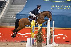 De Wit Thomas, BEL, Ecuador DW Z<br /> Pavo Hengsten competitie - Oudsbergen 2021<br /> © Hippo Foto - Dirk Caremans<br />  22/02/2021