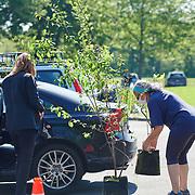 20210515 Tree Philly tif2