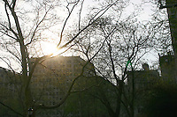 Evening sunlight in Central Park, New York