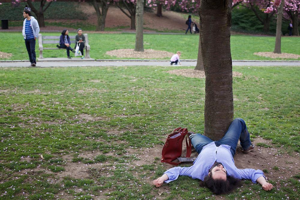 Brooklyn botanic garden.<br /> <br /> Photo: Tom Pietrasik<br /> New York City, USA <br /> May 5th 2015