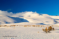 Snowy covered hills in the Lamar Valley of in Yellowstone National Park, Wyoming, USA