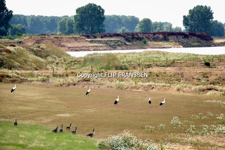 Nederland, Megen, 16-7-2019 Langs de Maas tussen Grave en Lith moeten nog belangrijke aanpassingen gedaan worden door Rijkswaterstaat om de rivier klaar te maken voor de toekomst . Hierdoor ontstaan nieuwe recreatiegebieden en natuurgebieden . recreatieplas, recreatie . Het Deltaplan is nog in uitvoering en heet hier de meanderende maas . Foto: Flip Franssen