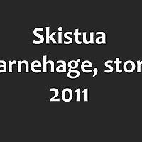 skistua_store
