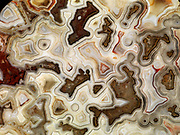 Beautiful fortification pattern in slice of Laguna Lace Agate from near Ojo Laguna, Chihuahua, Mexico.