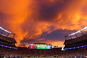 during an NFL football game /, Sunday, Nov. 19, 2017, in Denver. The XX defeated the XX, xx-xx. (Ryan Kang via AP)