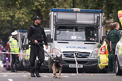 © Licensed to London News Pictures. 07/10/2017. London, UK.  Police with dogs at the scene of an incident outside the Natural History Museum. Early reports say a man has been arrested after pedestrians were injured in a collision with a car. Photo credit: Ben Cawthra/LNP