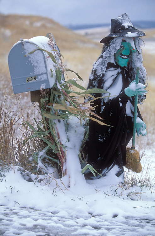 Halloween witch watches over the rural mailbox covered in snow.