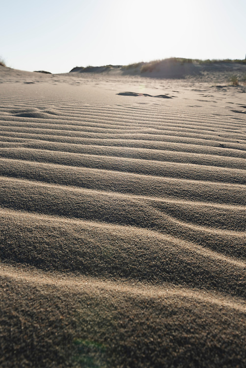 Curonian Spit, Lithuania - August 19, 2015: Early summer evening sunlight falls on the Parnidis Dune outside Nida, a Lithuanian town on the Curonian Spit.