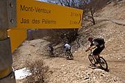 Descending Mont Ventoux, the Giant of Provence